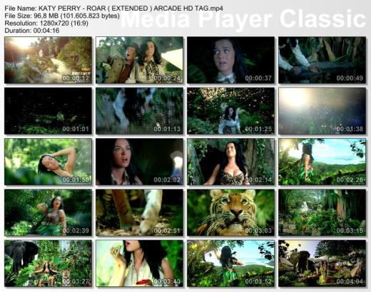 KATY PERRY - ROAR ( EXTENDED ) ARCADE HD TAG.mp4_thumbs_[2013.09.08_01.09.26]